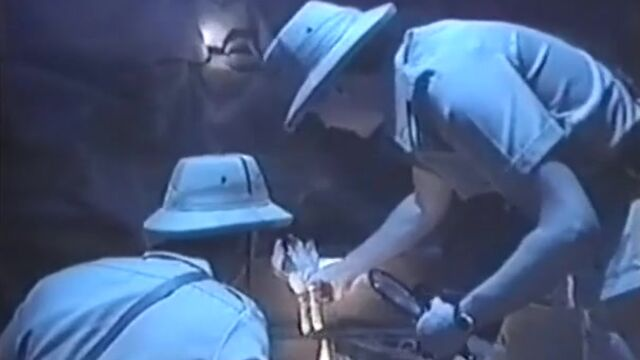 Тысяча и одна ночь / Arabian Nights (1993) Jim Enright, Wicked Pictures
