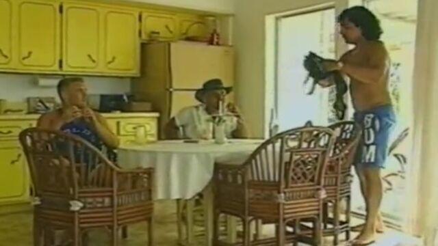 Золушка с большими сиськами / Booberella (1992) ретро порнофильм