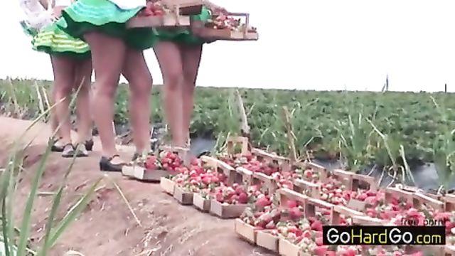 Собирала ягоды на поле и нарвалась на большой член