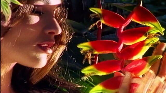 Зазель: Аромат любви / Zazel: The Scent of Love, фильм с переводом