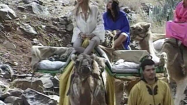 Королева слонов 2: Сахара (полный порно фильм с русским переводом)
