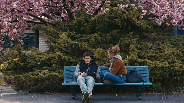 Жизнь Адель   La vie d'Adèle (2013) эротические фильмы